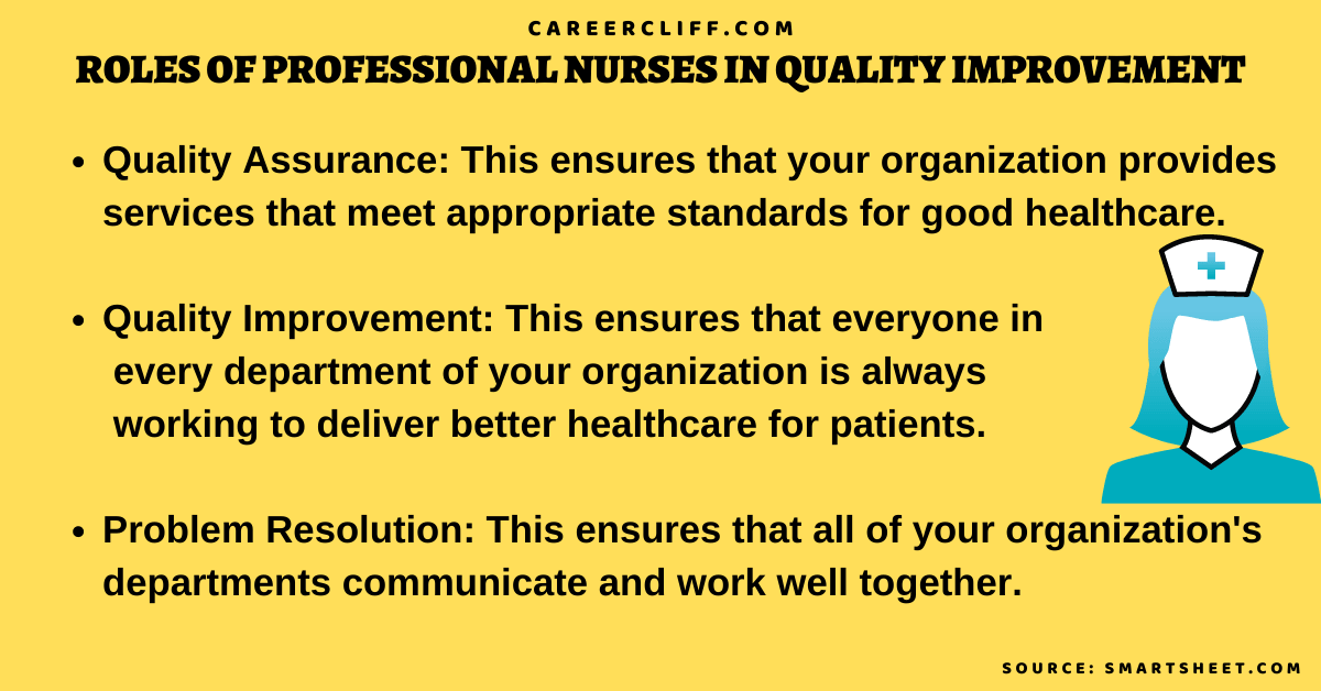 professional role development in nursing professional development for nurse educators charge nurse development program role development in professional nursing practice