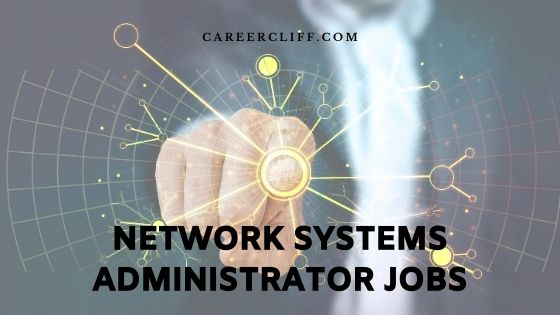 network systems administrator jobs